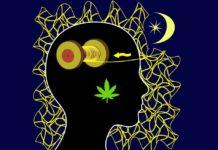 Cannabidiol gegen Schlafstörungen