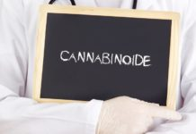 Cannabinoid-Mangel