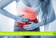 CBD-Öl bei Darmerkrankungen