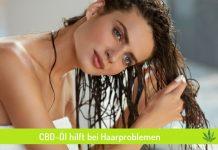CBD-Öl für die Haare